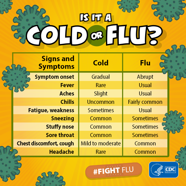 infographic that shows the difference between the cold and the flu